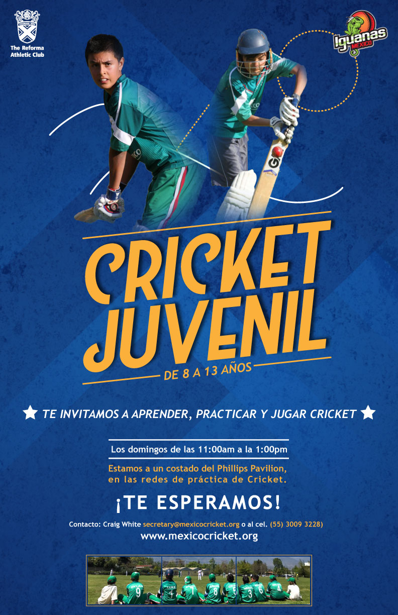 Cricket Juvenil OK