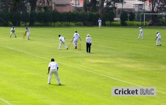 Rac Pleca Cricket